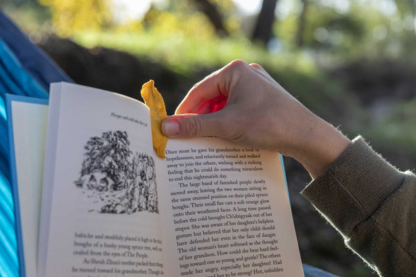 A reader uses a small slice of Patagonia Provisions Organic Chile Mango as a bookmark outside on a sunny afternoon