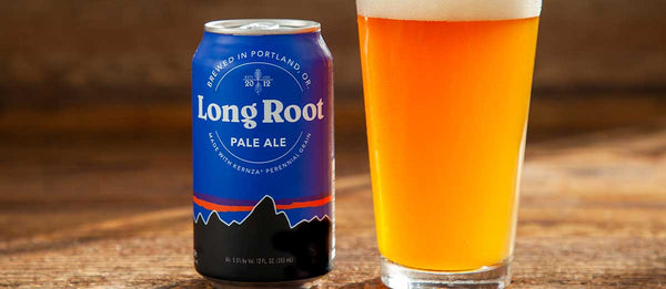 A can of Patagonia Provisions Long Root Ale rests next to a full pint glass on a wooden table