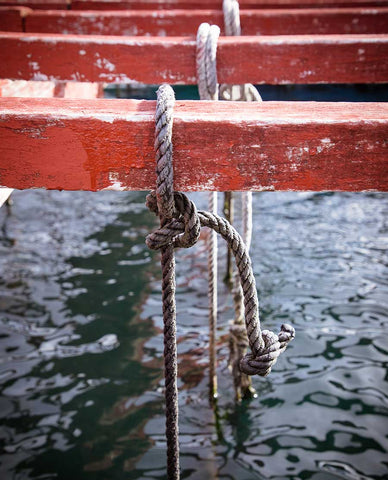 Ropes tied to red wooden beams and dropping into the ocean