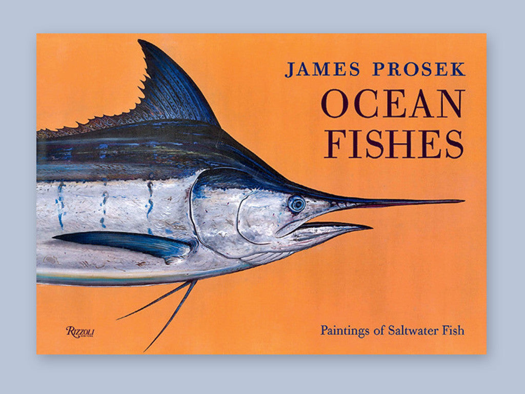 Ocean Fishes, Paintings of Saltwater Fish by James Prosek