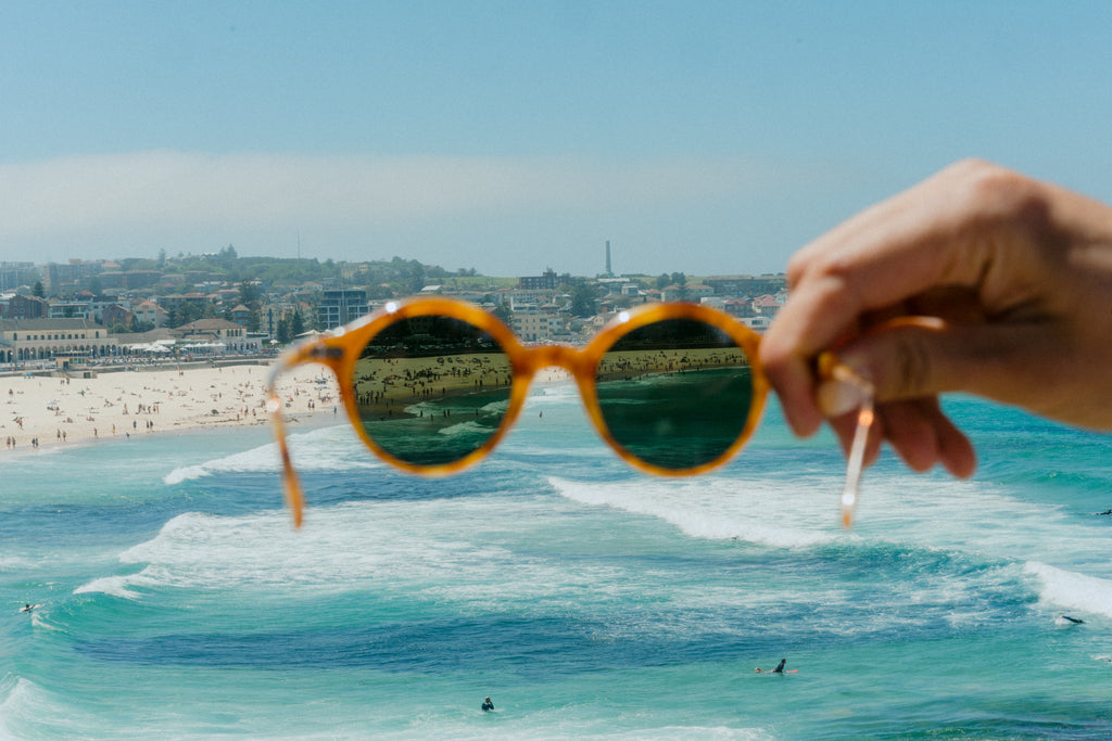 Bondi Lifeguards Bailey Nelson Polarised Sunglasses