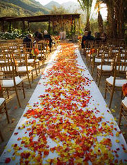 wedding with fall leaves in ground in aisle bride walks down
