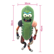 Load image into Gallery viewer, 45cm Pickles Rick