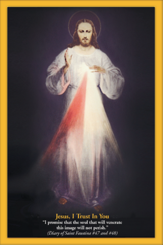 100  4x6 Chaplet of Divine Mercy holy card with promises attached (FREE SHIPPING)