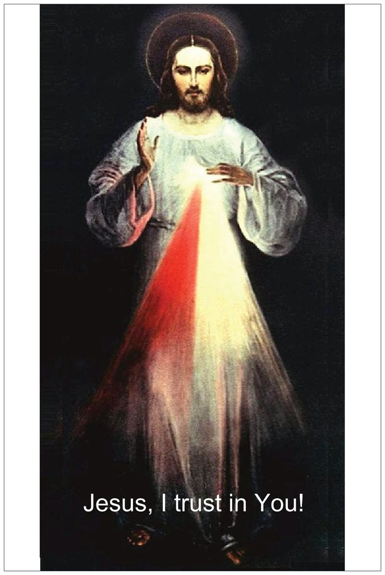 Divine Mercy Image 6 foot Vilnius (Free Shipping)