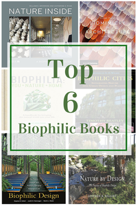 Top 6 Biophilic Book Recommendations