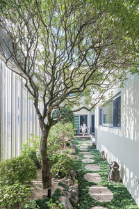The Benefits of Healing Gardens and Biophilic Design in Healthcare
