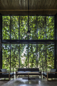 How to Create Happiness with Biophilic Design?