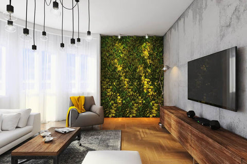 Close up of green plant wall in modern living room.