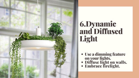 6. Dynamic and Diffused Light