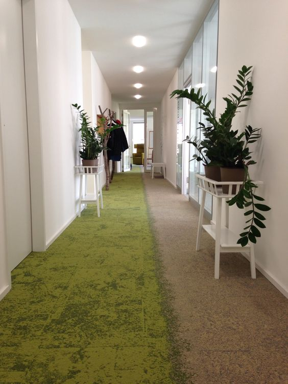 Biophilic Socially Distance Office Zoning - Image Credit : Pinterest