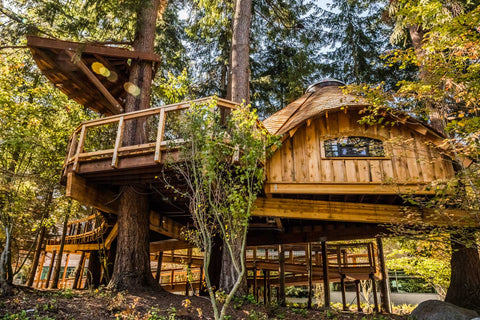 Microsoft's corporate headquarters in Redmond, Washington to build three treehouse work spaces for their employees.PHOTO COURTESY OF MICROSOFT.