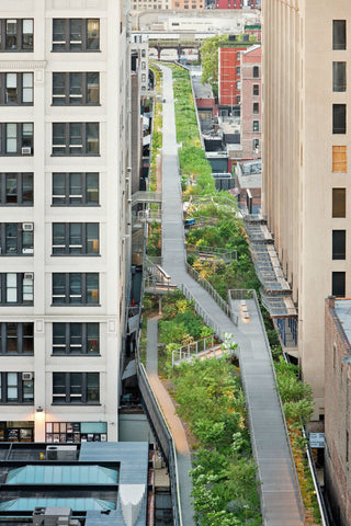 The High Line, New York, Image Credit - (Architectural Digest)
