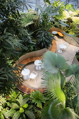 Credit- The Spheres: Exploring Biophilia in the Modern Workplace