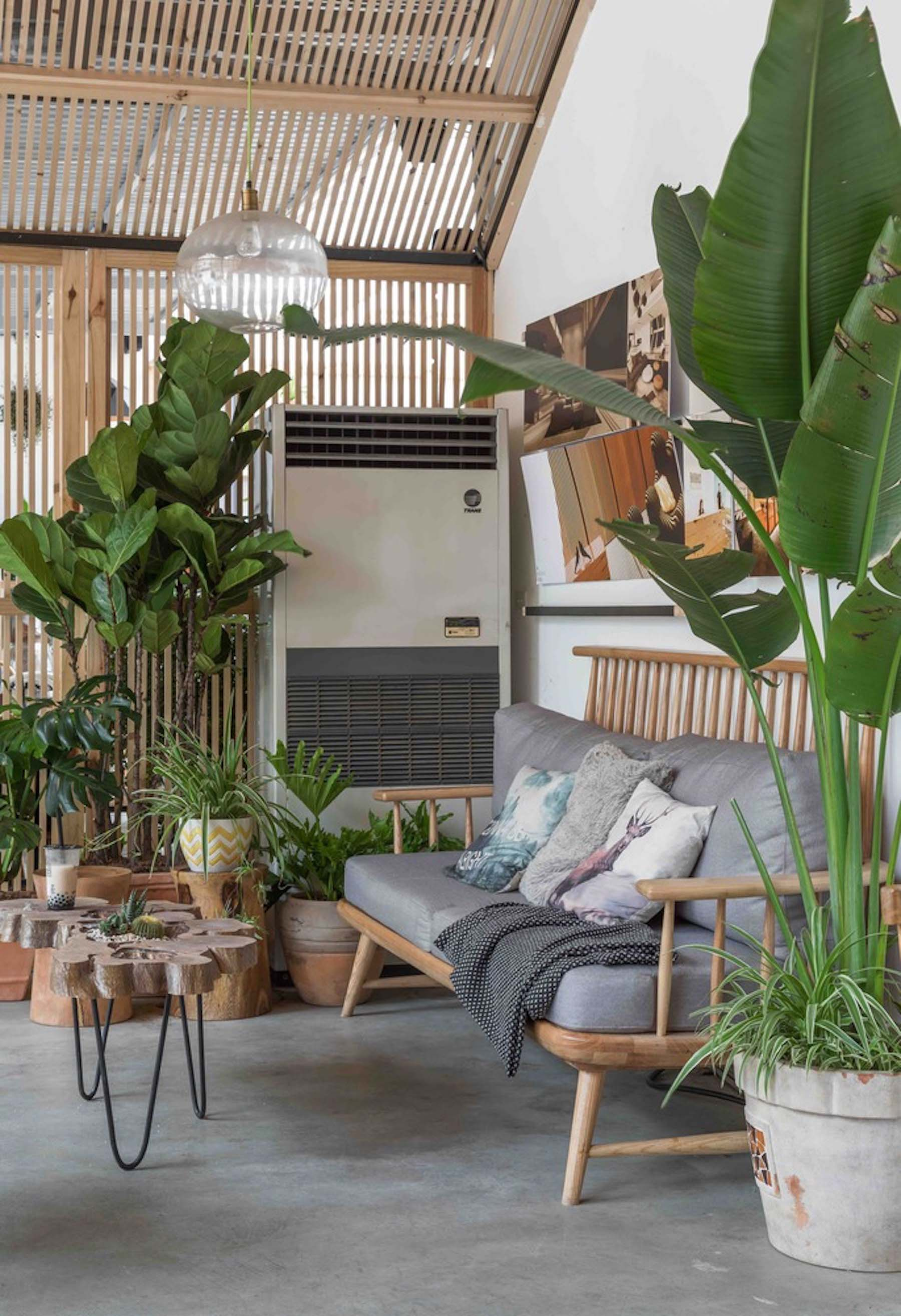 Tropical Forest café and plant store by Tayone Design Studio