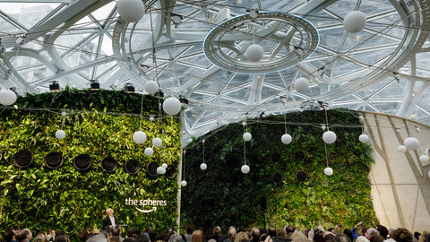 Credit, Dezeen- Plant-filled spheres open at Amazon headquarters in Seattle