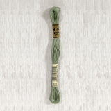 DMC Stranded Cotton 0522 Fern Green