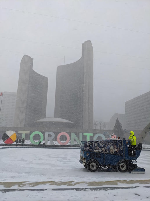 January 18, 2020 - Toronto Downtown Free Tour + Snowstorm