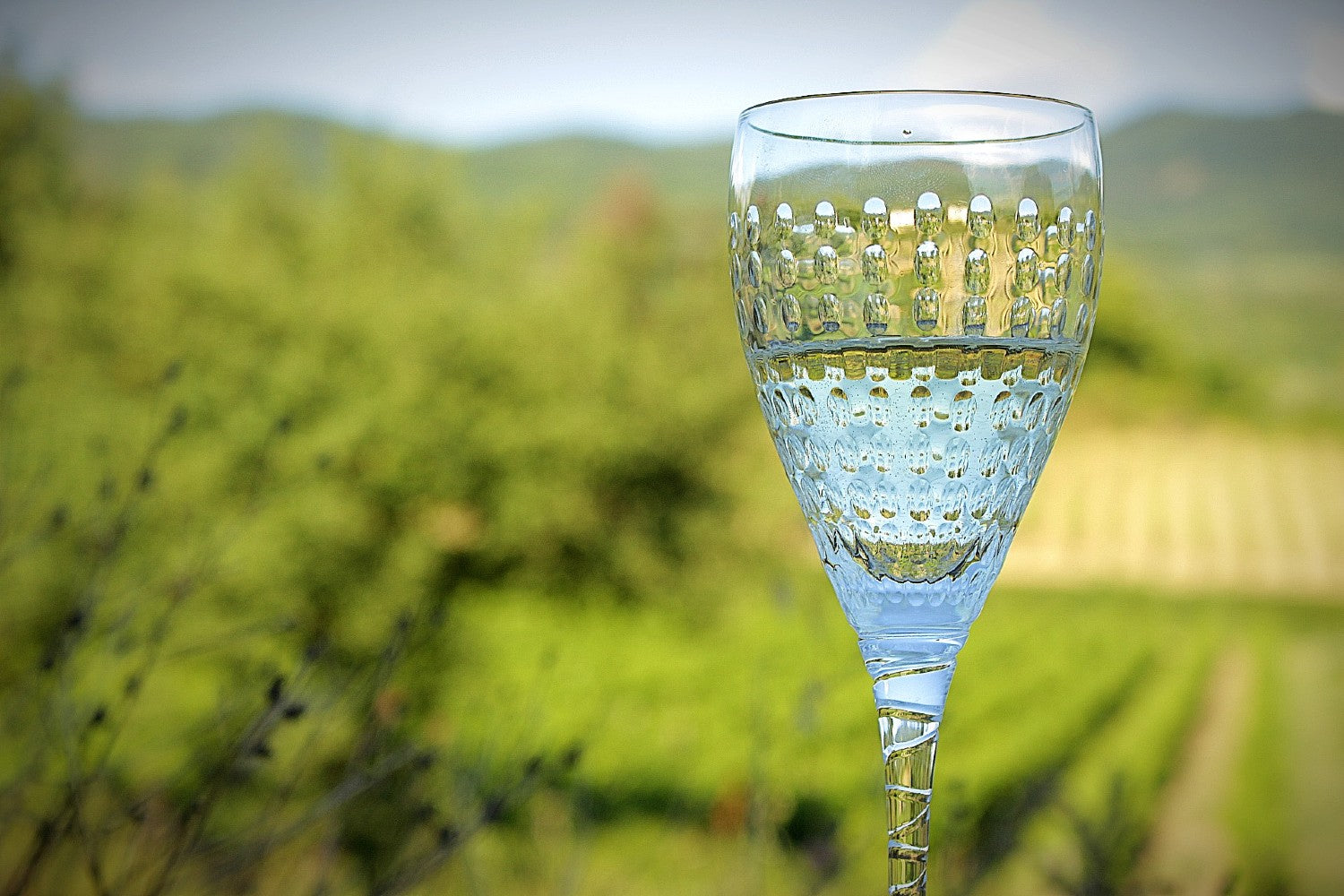 Prosecco Glass - Hand Engraved Crystals