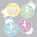 Ladybug Baby Milestone Stickers/Set of 12 (1-12) Monthly Milestone Stickers/Ladybug Baby Shower Gift