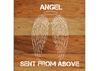 Angel Wings Chalk White on a 6 x 6 Rustic Aged Natural Wood Pallet