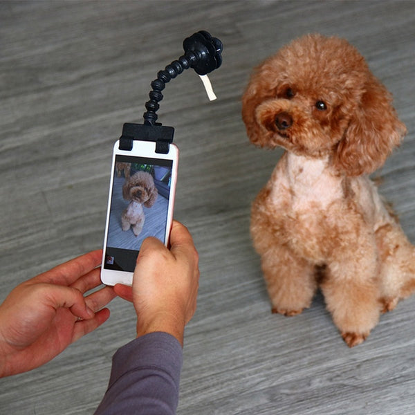 Bendable Dog Selfie Stick Phone Attachment