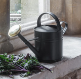 Dark grey, powder coated watering can with brass rose sitting on window sill