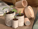 3 small pots made from paper with seedlings growing in them, wooden pot maker in background