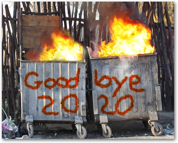 Good Bye 2020 Dumpster Fire New Year Cards - Blank on the Inside – Small  World Greetings