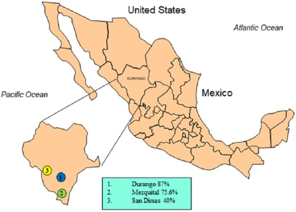 Apparently high Leptospira antibody seropositivity in donkeys for slaughter in three municipalities in Durango, Mexico