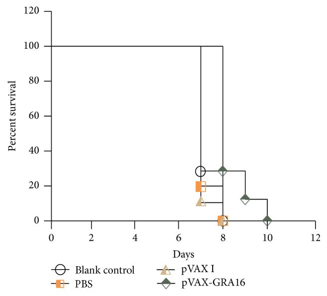 Resistance to Chronic Toxoplasma gondii Infection Induced by a DNA Vaccine Expressing GRA16