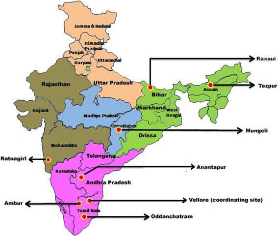 Acute undifferentiated fever in India: a multicentre study of aetiology and diagnostic accuracy