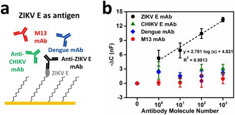 An Ultra-Sensitive Capacitive Microwire Sensor for Pathogen-Specific Serum Antibody Responses