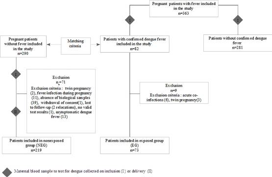 A prospective matched study on symptomatic dengue in pregnancy