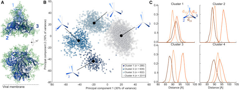 Microsecond Dynamics and Network Analysis of the HIV-1 SOSIP Env Trimer Reveal Collective Behavior and Conserved Microdomains of the Glycan Shield.