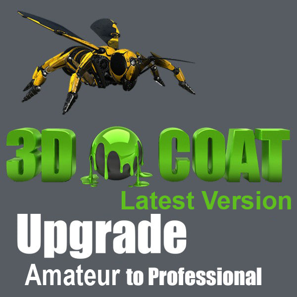 3D-Coat 4.9 - Amateur to Professional Upgrade