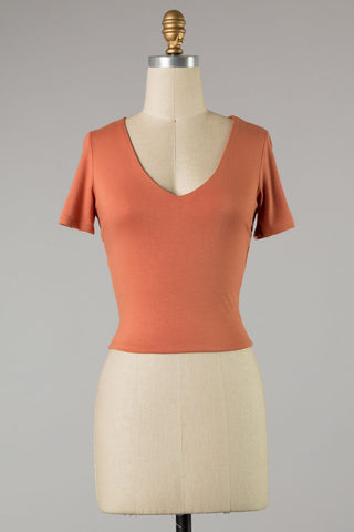 Short Sleeve V Cut Crop Top (Terra Cotta)