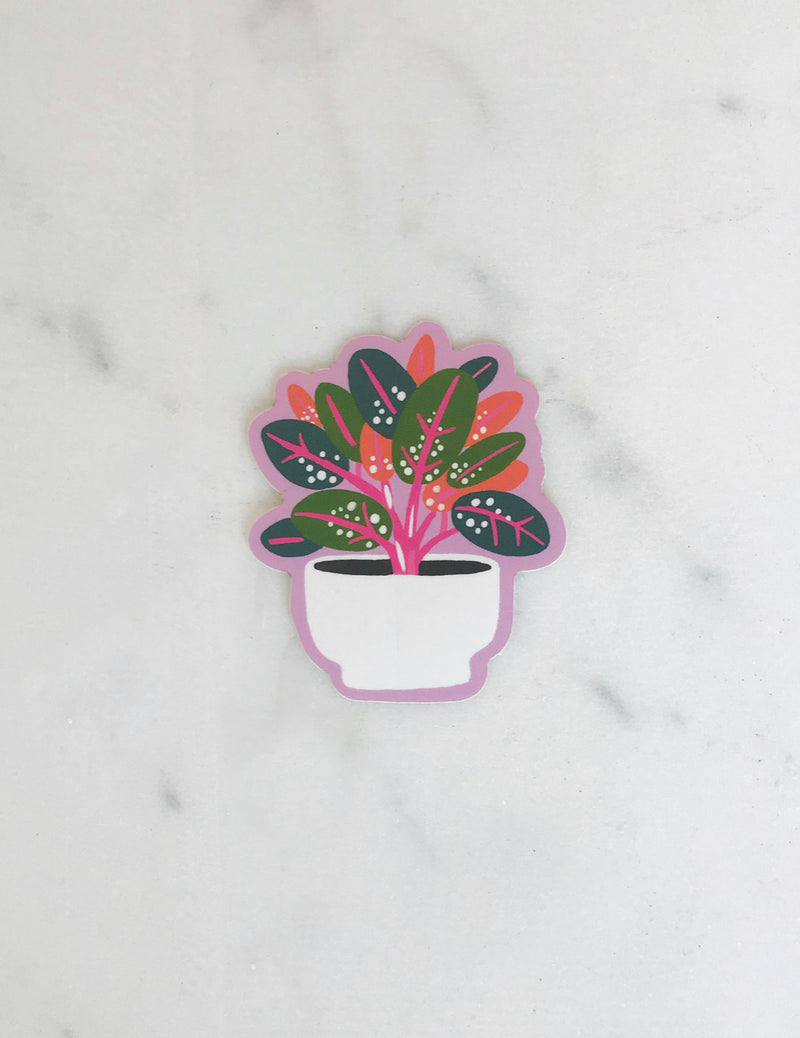 Rubber Plant Sticker