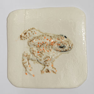 Natter Jack Toad Hand Made Porcelain Tile