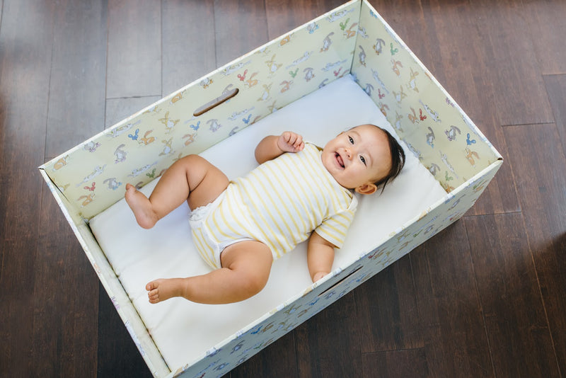 Ohio Becomes Second State to Offer Free Baby Boxes to Curb Infant Deaths