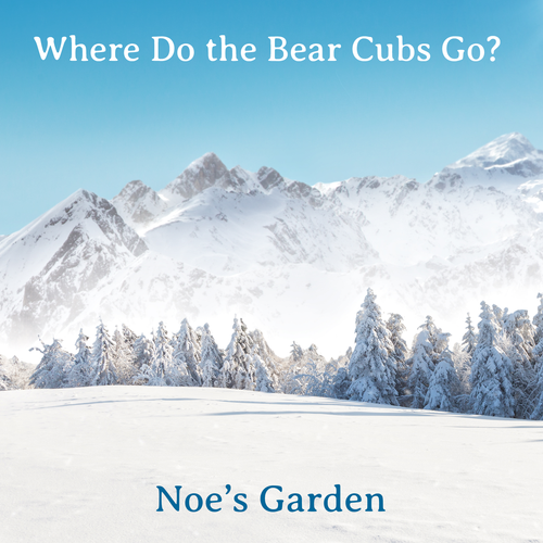 Where Do the Bear Cubs Go? - Digital Download