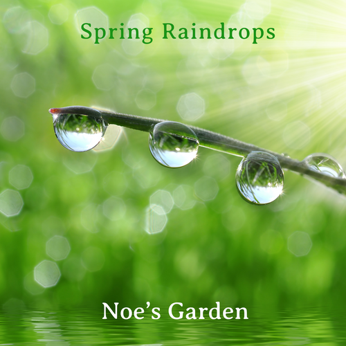 Spring Raindrops - Digital Download