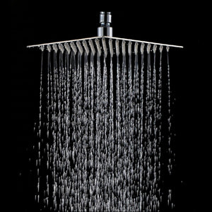 Rain Shower Rainfall Rainforest Large Head
