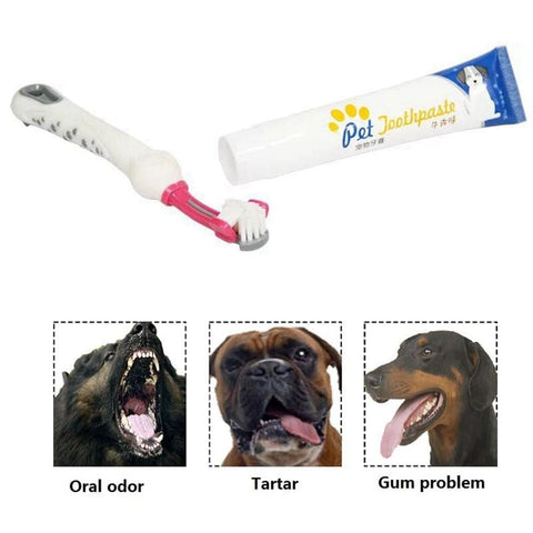 Dog Toothpaste With Toothbrush And Brush Best