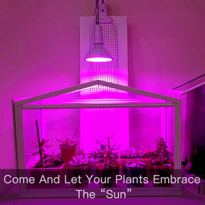 Grow Plant Light LED Indoor Bulbs Lamp Lights For Full Spectrum Fluorescent Best