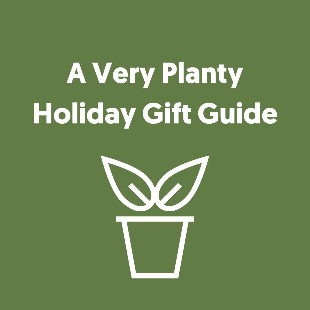 A Very Planty Holiday Gift Guide (For Every Person on your List)