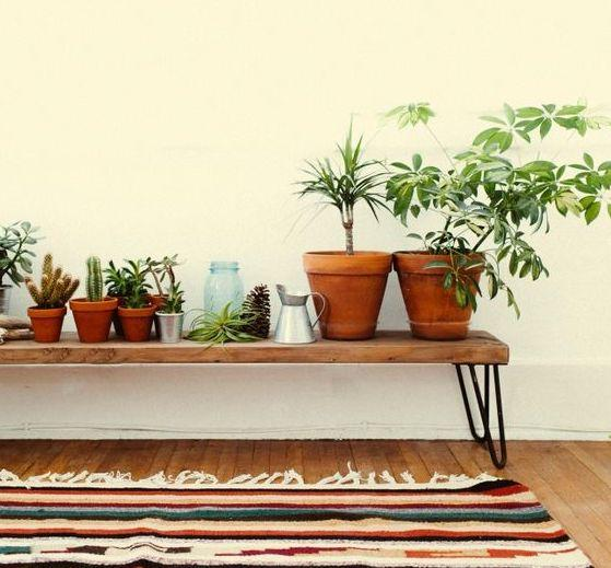 Inspiration: Plants in your hallway!