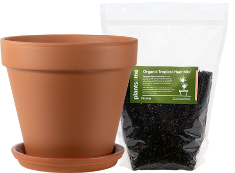 Terracotta pot and potting soil delivery in Canada