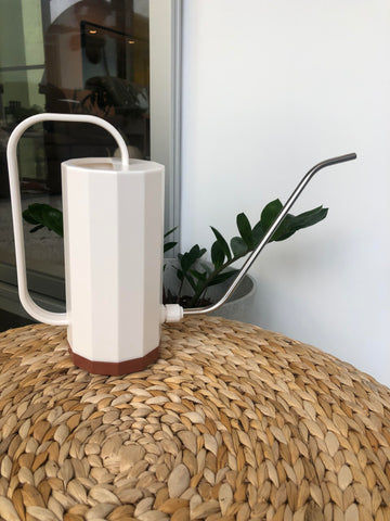 Walter White the houseplant watering can