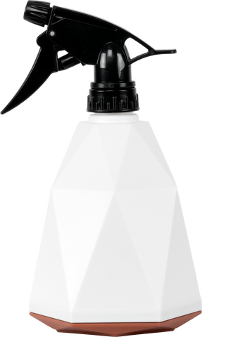 Jesse a spray bottle to be used as a mister for tropical plants